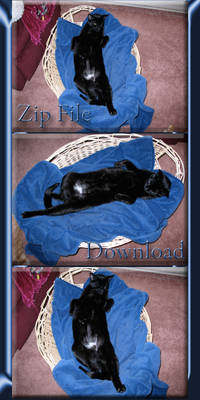 Totally Relaxed Stormy ZipPack