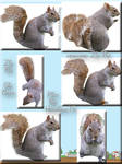 Set of Six Squirrel tubes Zip