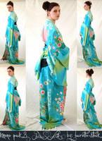 kimono stock pack 008 by lucretia-stock