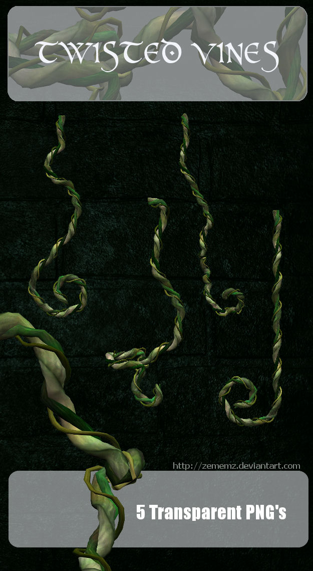3D Twisted Vines