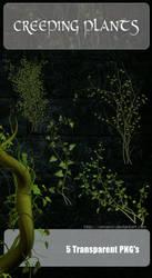 3D Creeping Plants