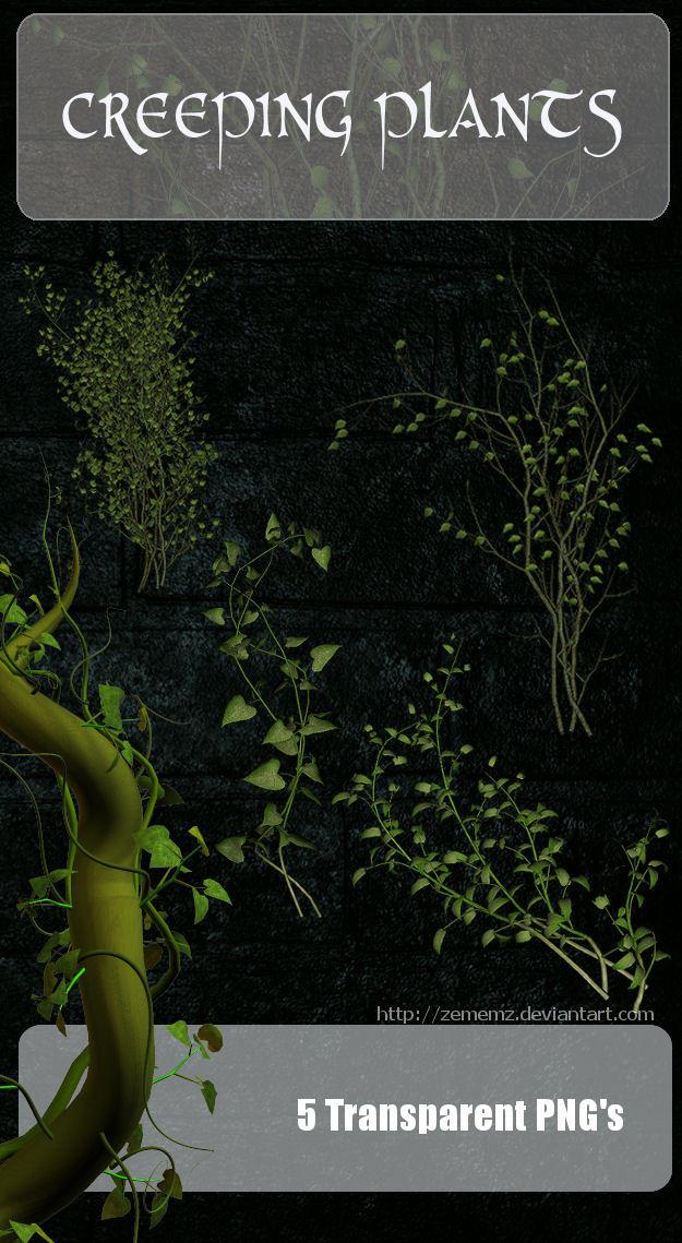3D Creeping Plants by zememz
