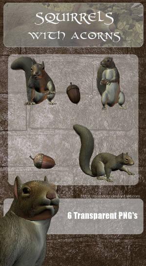 3D Squirrels