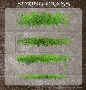3D Spring Grass