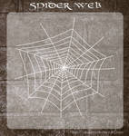 3D Spider Web