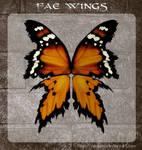 3D Fae Wings 4