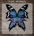 3D Fae Wings 5