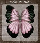 3D Fae Wings 6