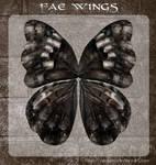 3D Fae Wings 7