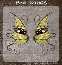 3D Fae Wings 8