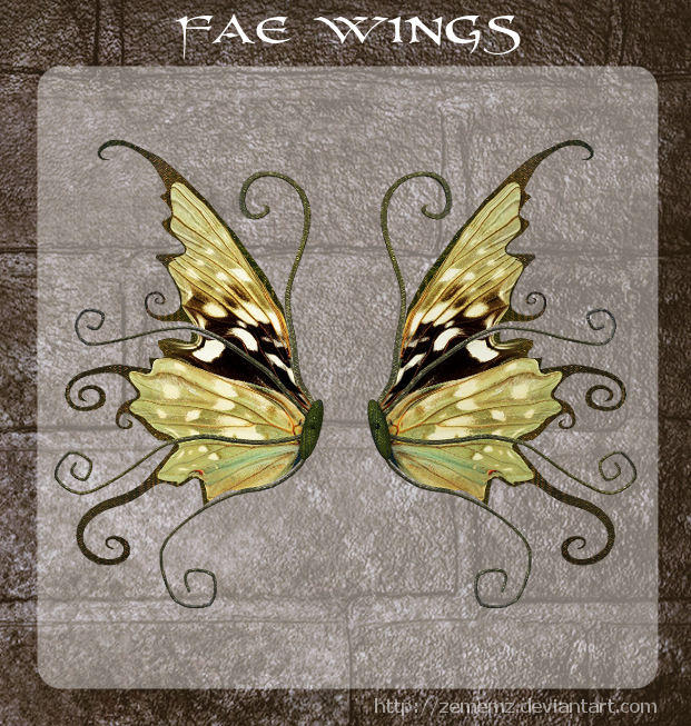 3D Fae Wings 8 by zememz