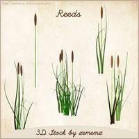 3D Reeds by zememz