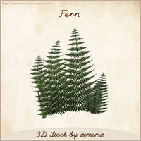 3D Fern by zememz