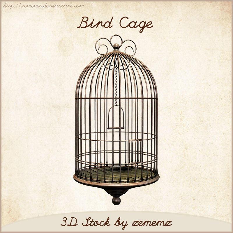 3D Bird Cage by zememz