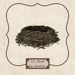3D Nest