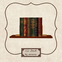 3D Books On A Shelf by zememz