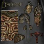 Decomp by zememz