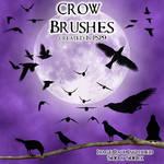 Crow PSP 9 Brushes