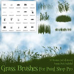 Grass Brushes for Paint Shop Pro