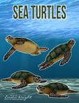Sea Turtles by zememz