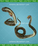 Pythons - FREE Content by zememz