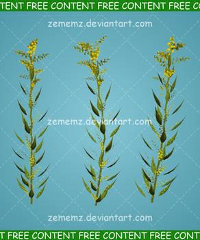 Plant 001 - FREE Content
