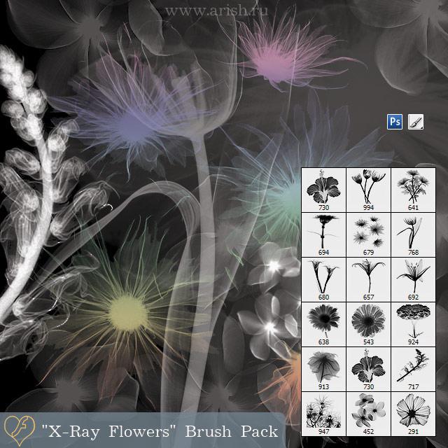 """""""X-Ray Flowers"""" Brush Pack by flashtuchka"""