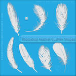 Feather Custom Shapes