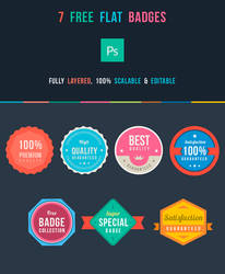 .: Free Flat Badges PSD :.