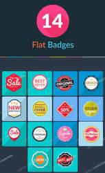 .: 14 Flat Badges PSD :.