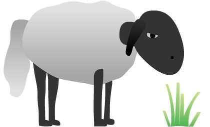 Ead Sheep