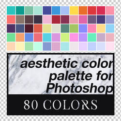 Aesthetic Color Palette for Photoshop