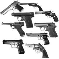DVX Gun Brushes