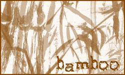 Bamboo by nico-brushes
