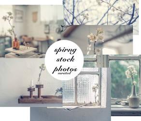 Spring Stock [luxcity Graphics]