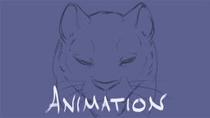 Animation Sketch