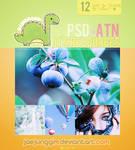 JJ's PSD+ATN 12