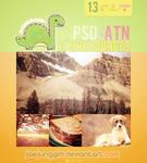 JJ's PSD+ATN 13