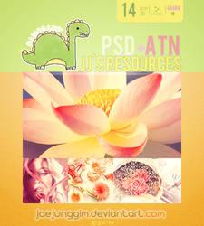 JJ's PSD+ATN 14 by enhancers