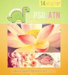 JJ's PSD+ATN 14