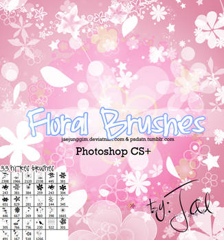 33Hi-Res Floral Brushes PS by enhancers