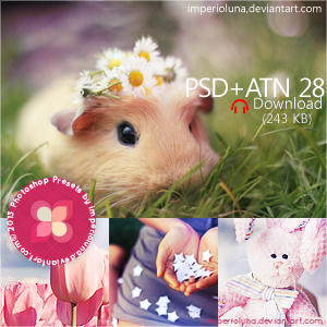 JJ's PSD+ATN 28 by enhancers