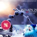 JJ's PSD+ATN 29