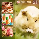 JJ's PSD+ATN 31