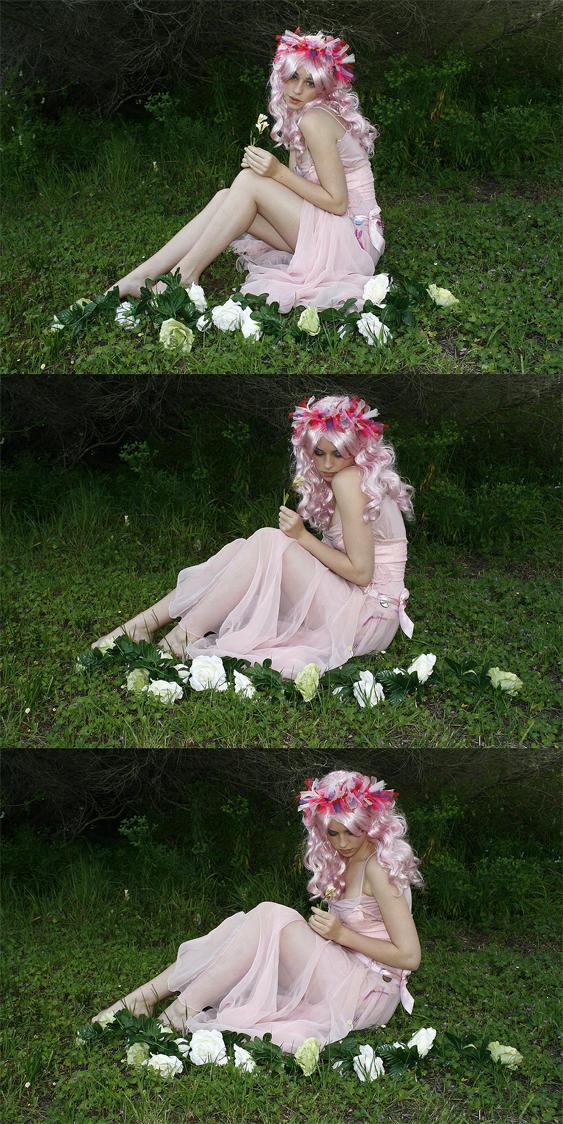 Blossom 9 by faestock