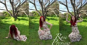 Rose Pack5