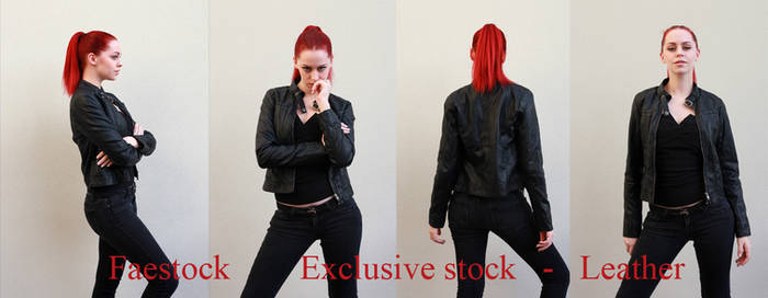 Leather Exclusive stock
