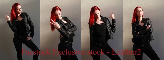 Leather Exclusive stock 2
