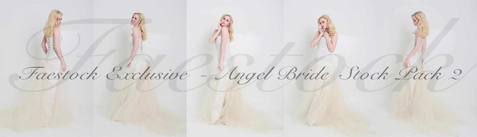 Bridal Exclusive Stock Pack 2 by faestock