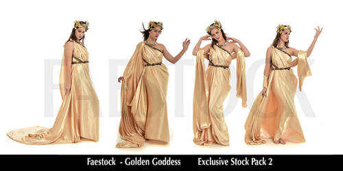 Golden Goddess   - Exclusive Stock Pack  2